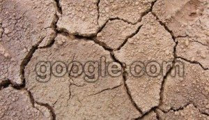 2014-07-04-tips-menghindari-pembelian-tanah-bermasalah