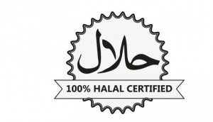 1916001halal4780x390